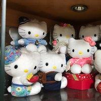 Hello kittty 十隻