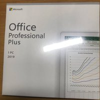 Microsoft Office 2019 專業版(有盒)professional plus 2019